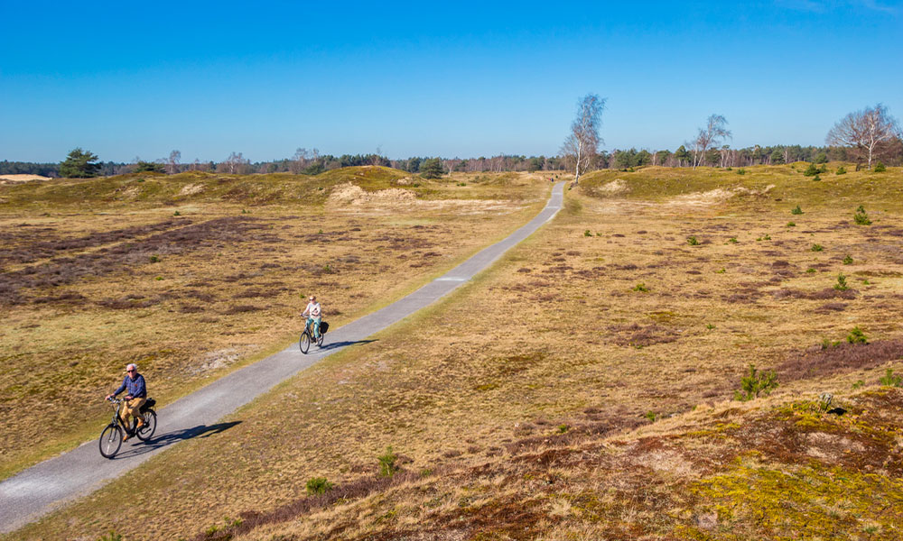 Nationaal-Park-Drents-Friese-Wold